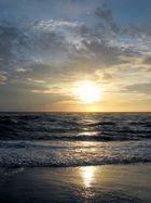 Ich will wieder an die Nordsee....