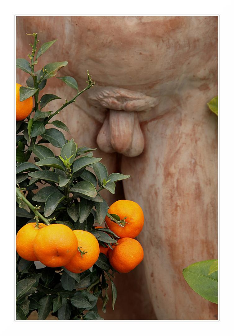 Ich wollte in der Gärtnerei eigentlich.....