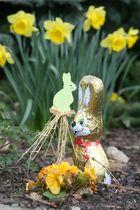 Ich wünsche Frohe Ostern!