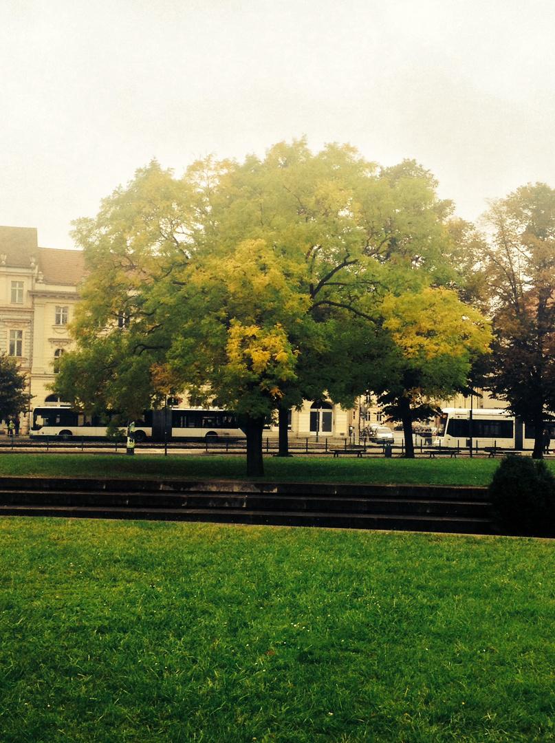 Ich würde sagen der Herbst ist da!