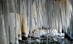 icicle forest