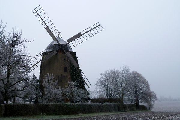 Icing sugar - Puderzuckerlandschaft mit Windmühle, Niederndodeleben/ Börde