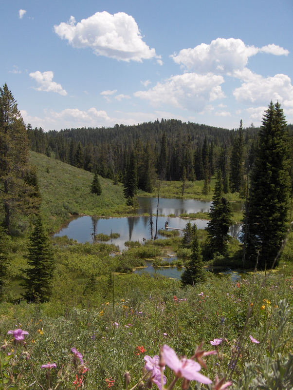 Idaho Spring