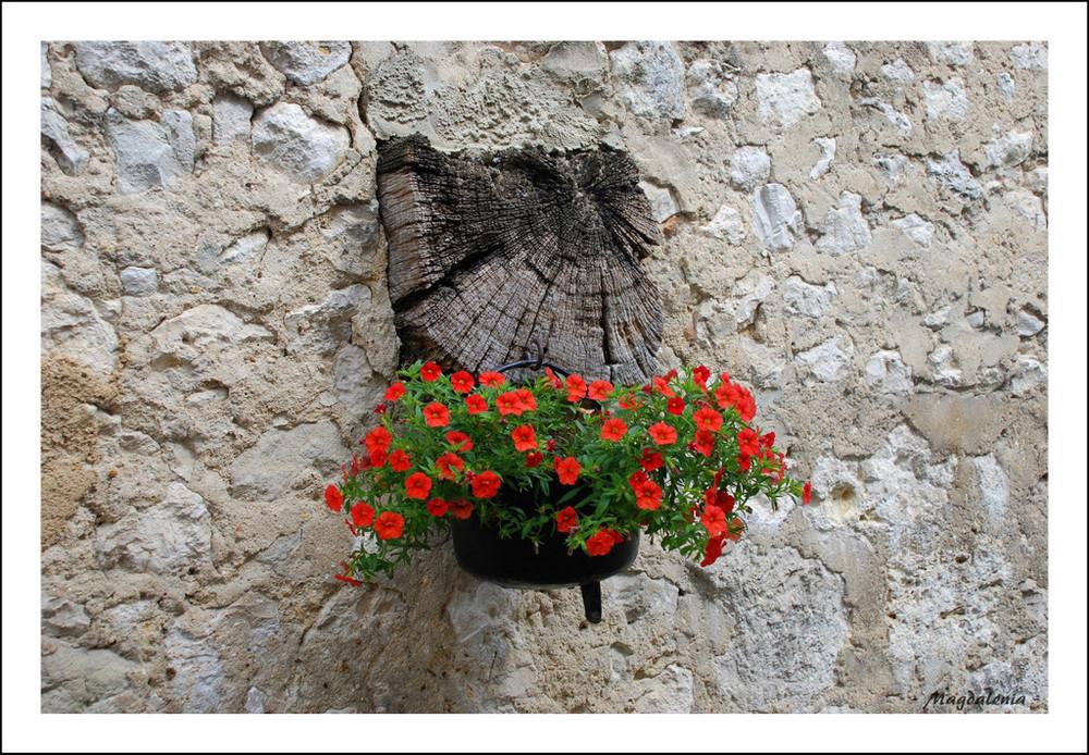 Idée de décoration florale *1