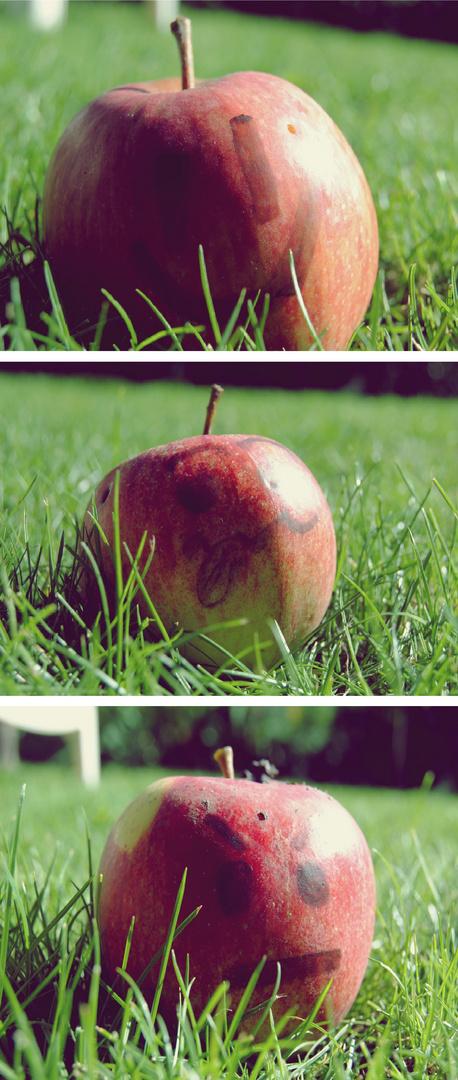 Idée de génie : mettre la pomme de Newton dans la brouette de Pascal.