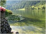 Idyll am Ferchensee