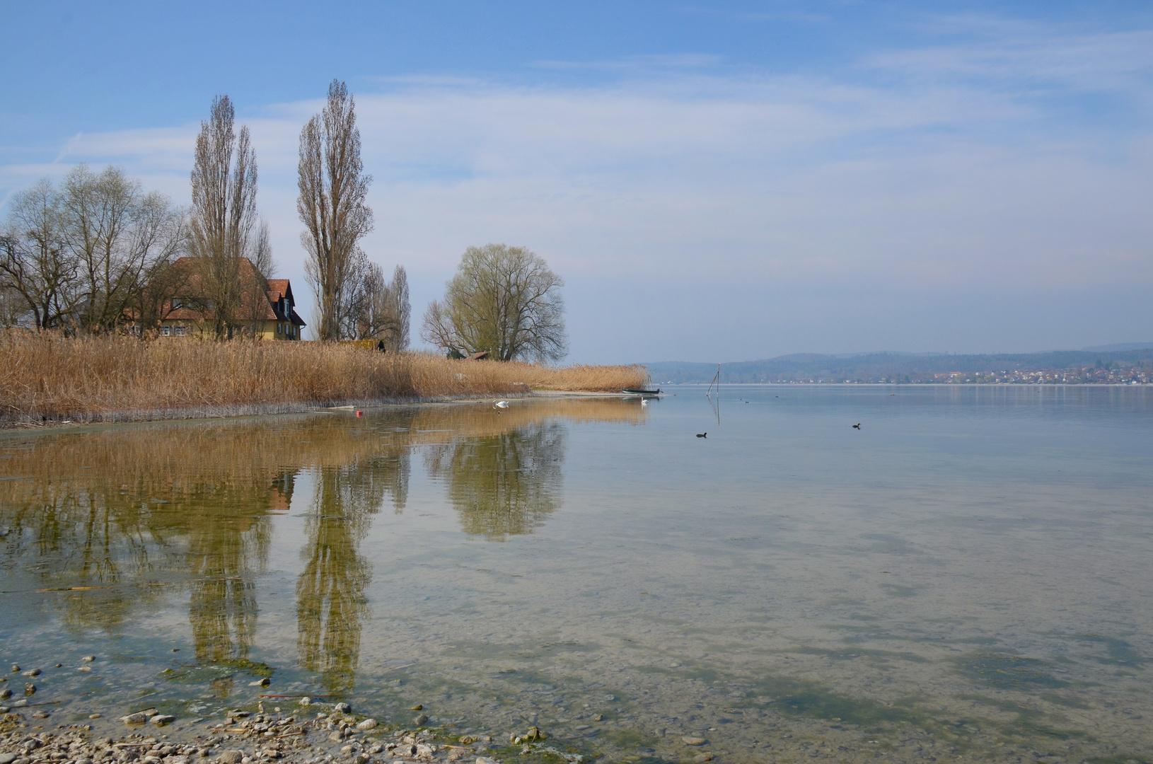 Idylle auf der Insel Reichenau  I