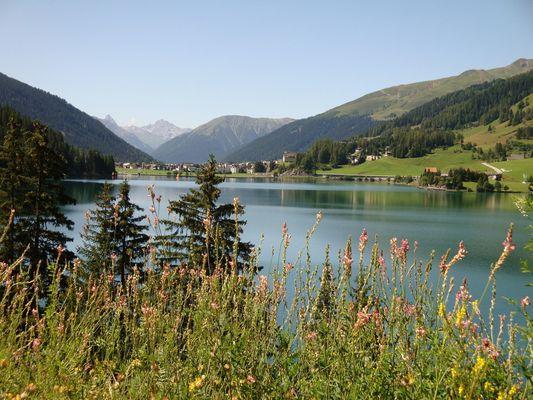Idylle - Der Bergsee - in Davos