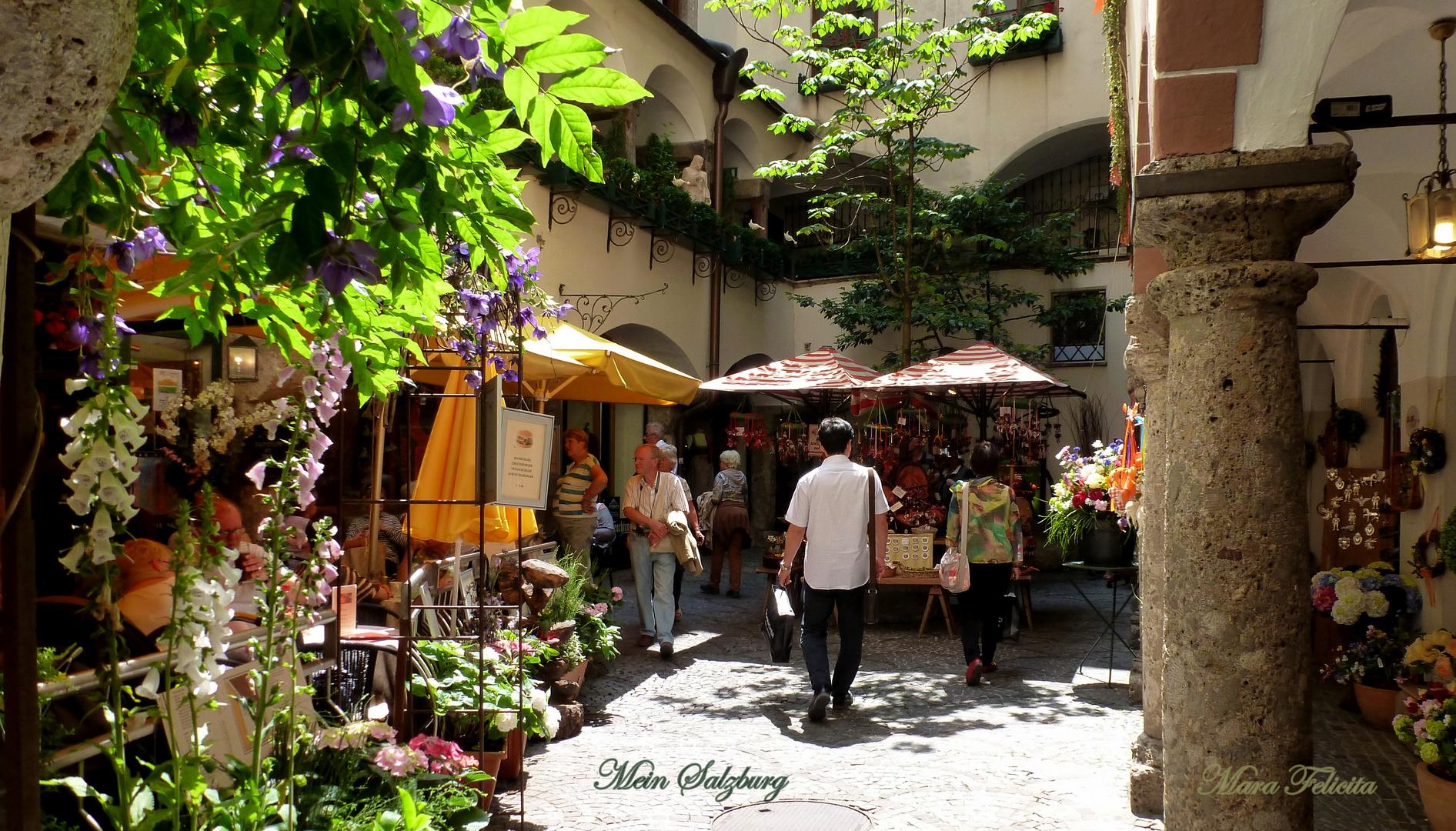 IDYLLE im Zentrum in der Stadt Salzburg
