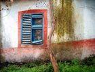 Idylle in Sao Roque do Faial