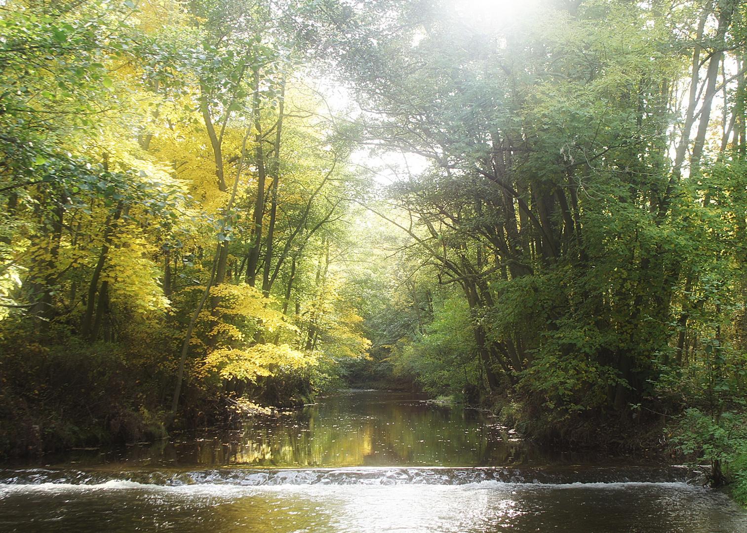 idyllische Natur