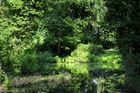 Idyllische Ruhe im Park von Schloss Marquardt