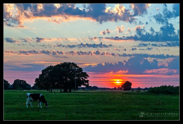 Idyllische Ruhe - Sonnenuntergang im Elbetal