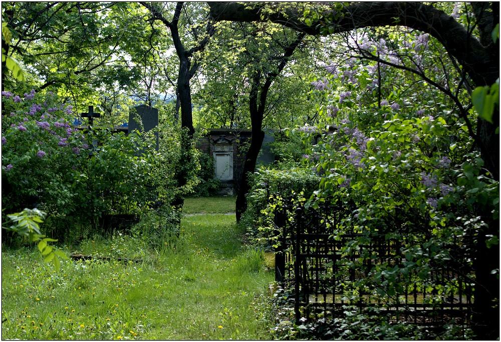 ... idyllischer Frühling ...