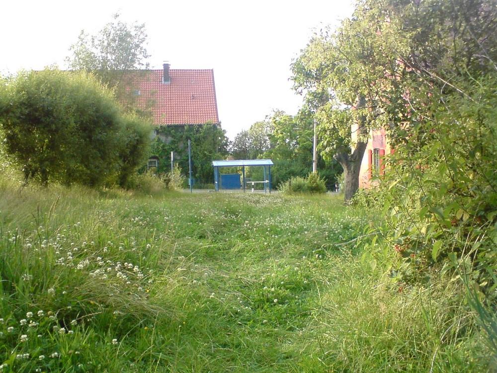 idyllischer Garten des JZO*