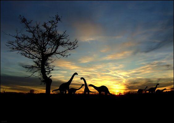 idyllisches Sonnenuntergangsbild mit Tieren