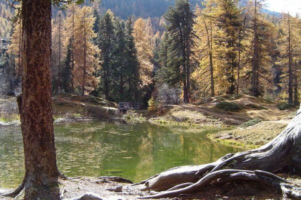 Idyllisches Südtirol