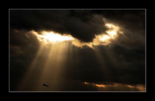 ...if I saw you in heaven...