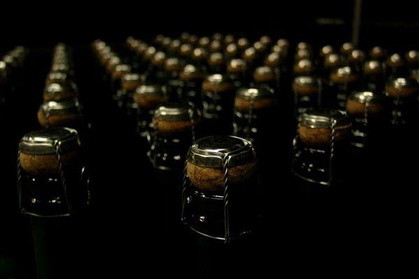 Ihr Flaschen!
