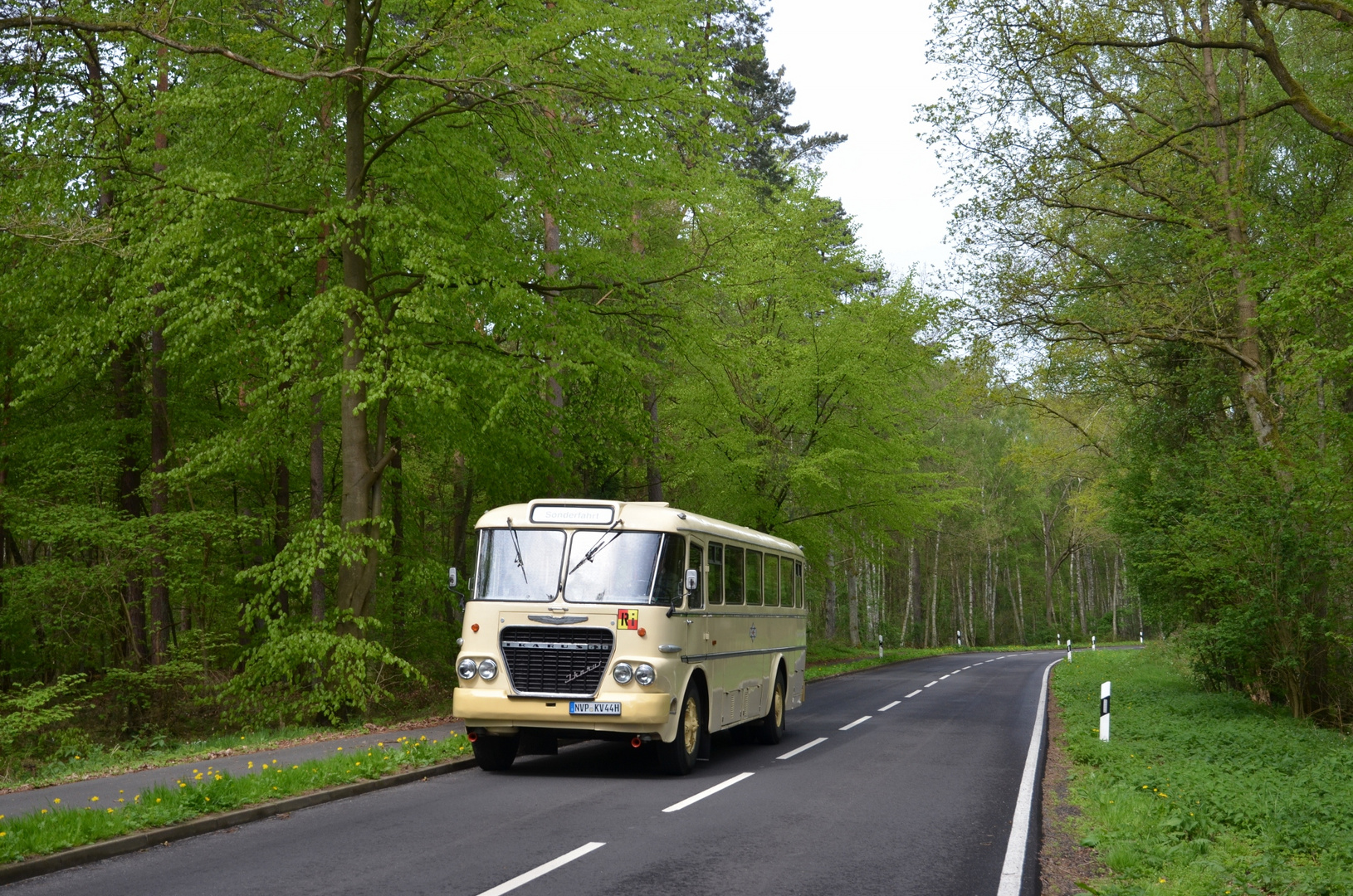 Ikarus 630 - Tour durch den Frühling