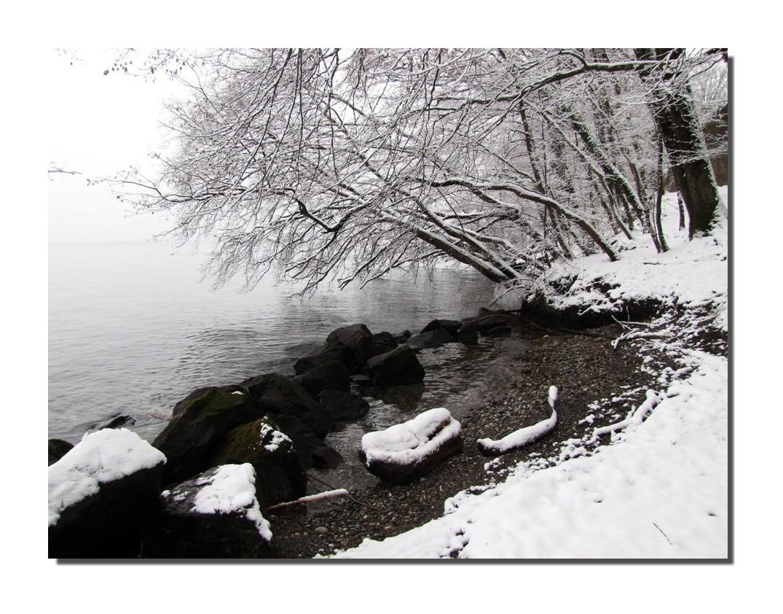 Il a neigé sur le lac Léman !!!