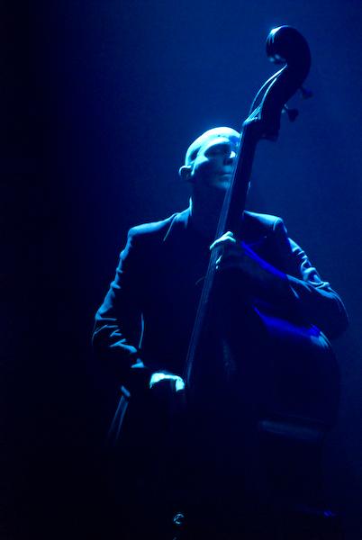 Il bassista di Cammariere
