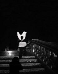 il buio, i passi, la luna 7