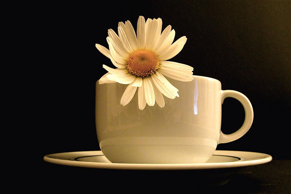 Il caffè con Margherita