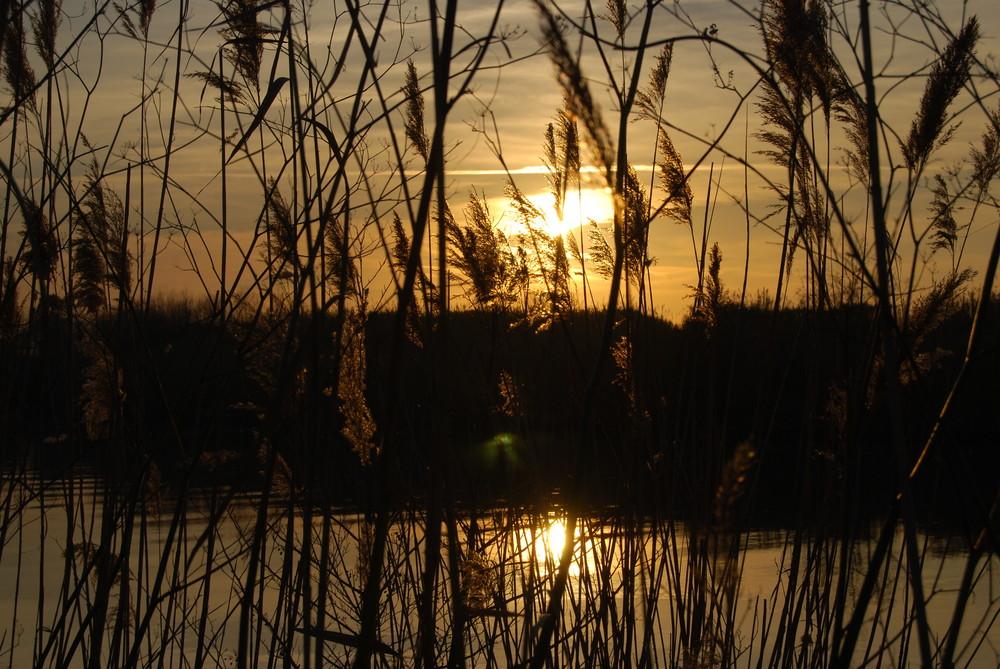 il canneto al tramonto