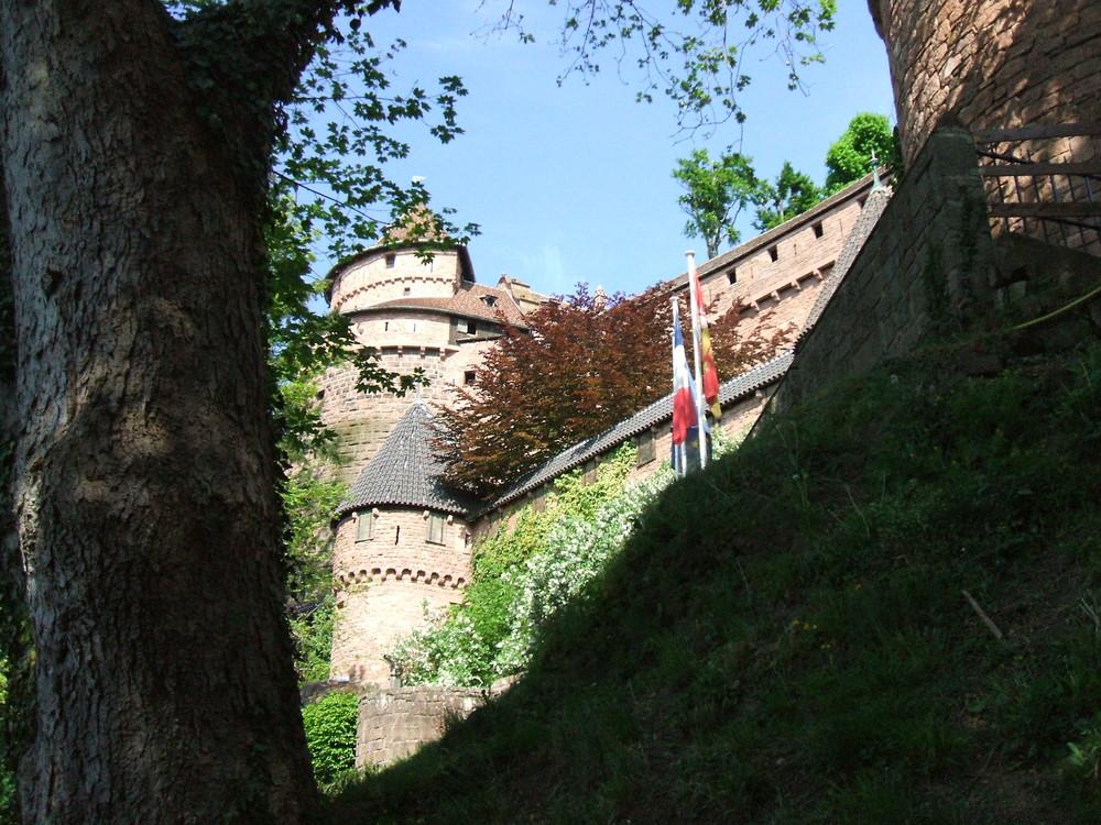 il castello fra gli alberi