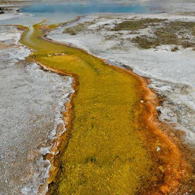 il fiume giallo