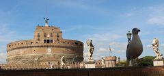 il gabbiano di Castel S. Angelo...