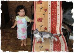 Il gattino di  Matilde.