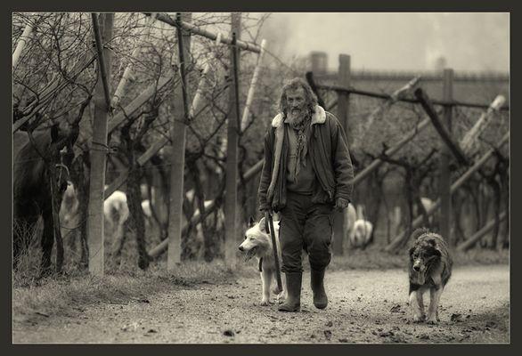 Il giorno di un pastore