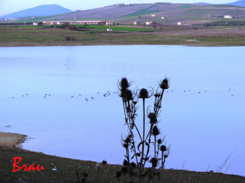 Il lago bleu.