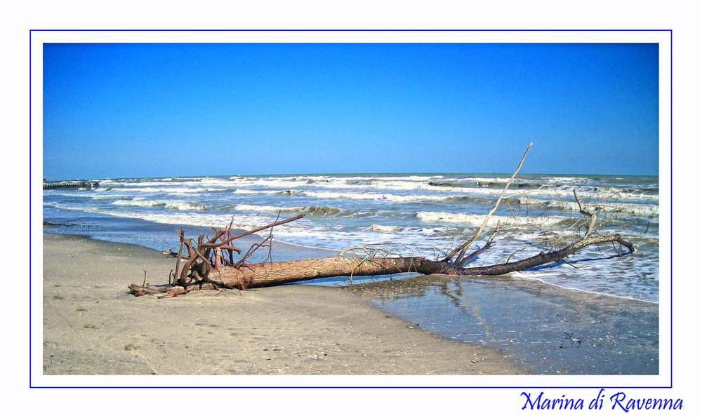 il mare a primavera