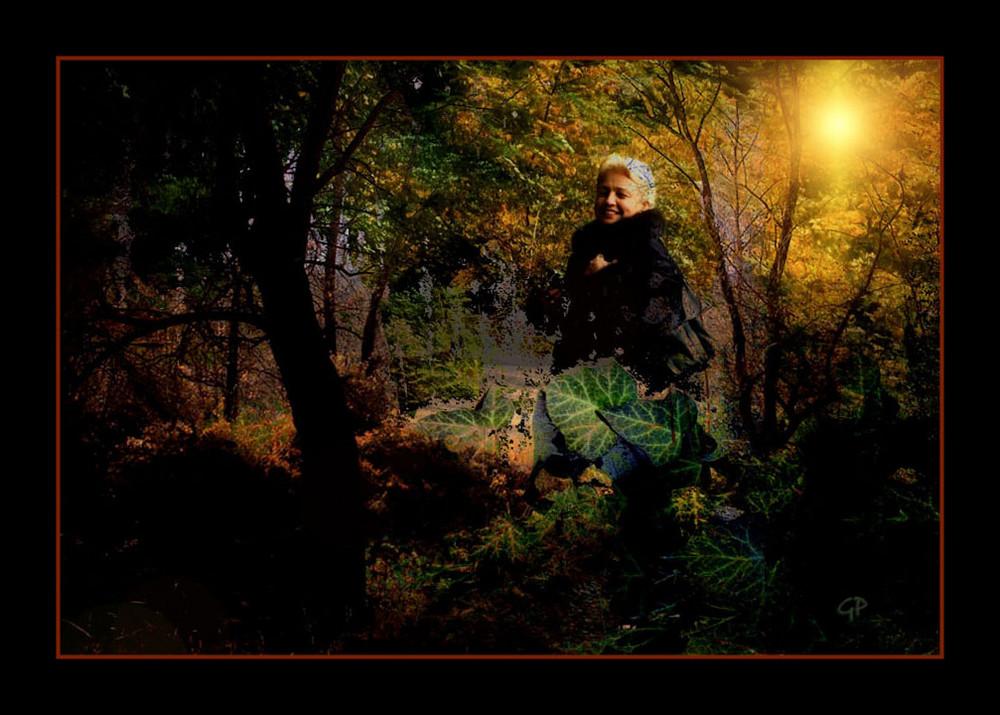 Il mio bosco incantato