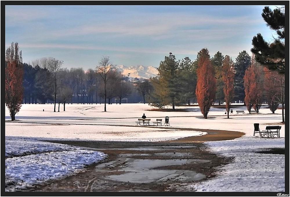 Il mio parco stamattina