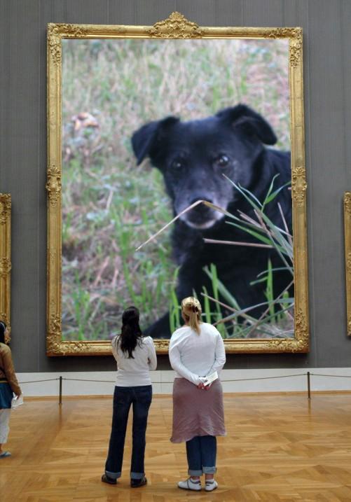 Il mio più grande ....... AMORE si merita il museo
