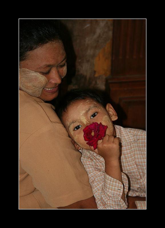 il piccolo principe e la sua rosa