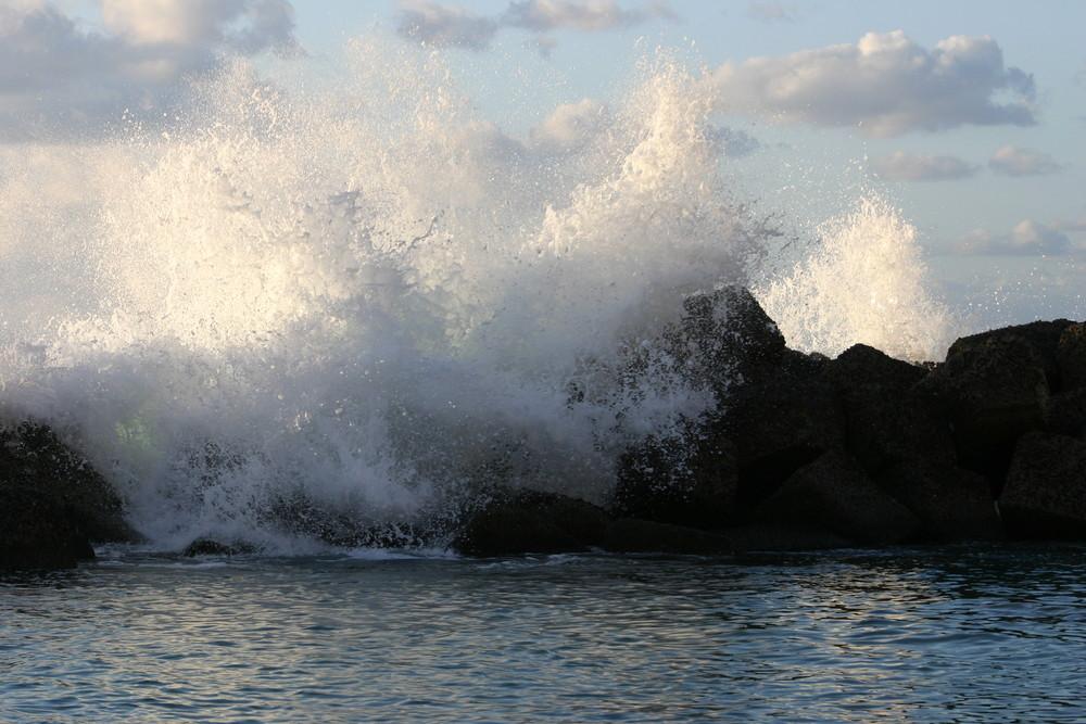 Il ritorno dell'onda
