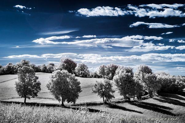 il sentiero verso il blu