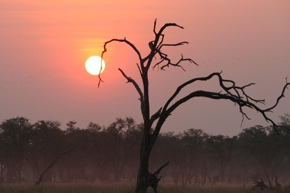 Il sole al tramonto della Moremi G.R.