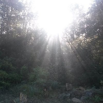 Il sole e le ombre
