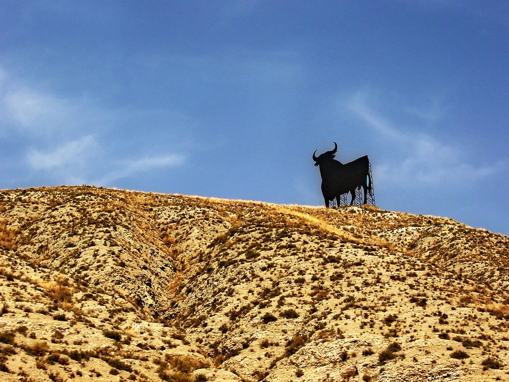 Il toro della Navarra