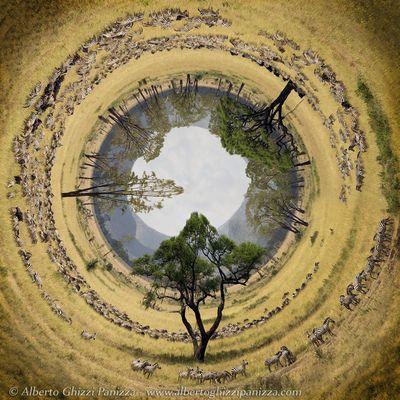 Il tunnel delle zebre