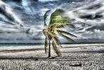 il vento della solitudine post