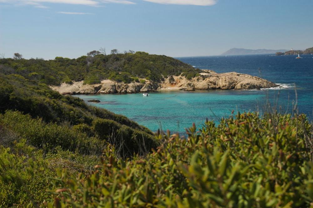 Ile de Porquerolles (Toulon,var,France)