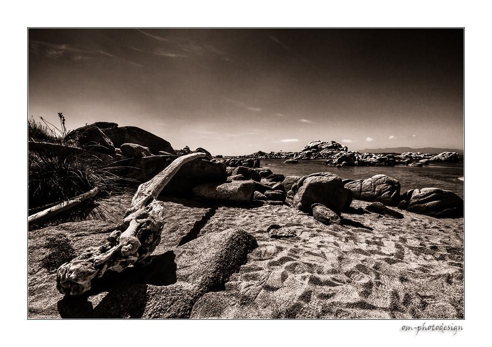 Ille Lavezzi - Stones, Tree and Beach - SW