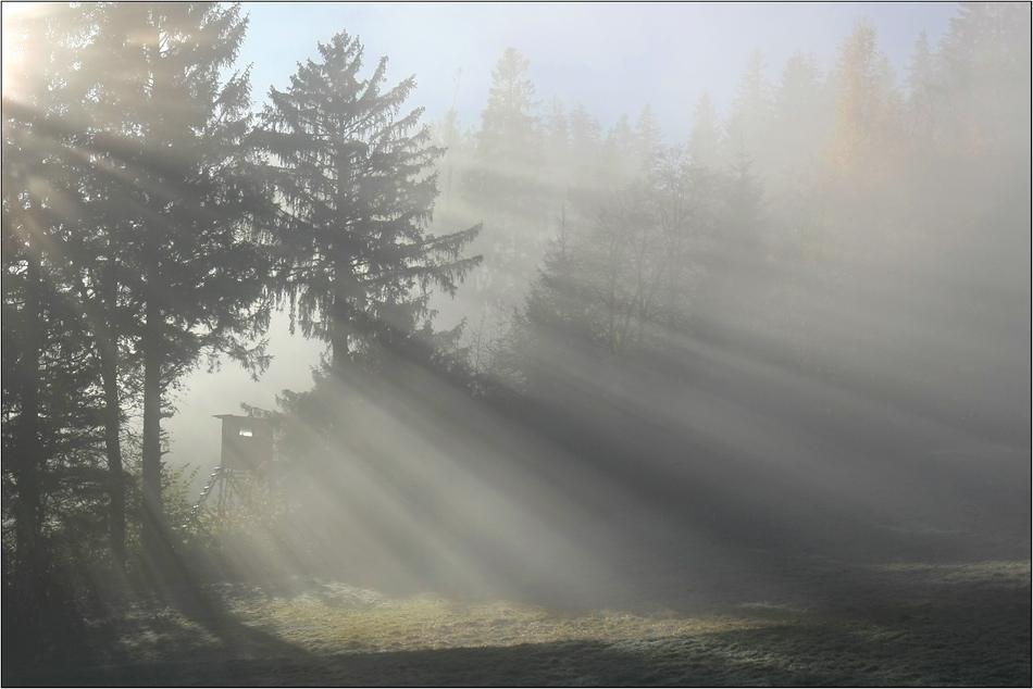~ Illumination III ~
